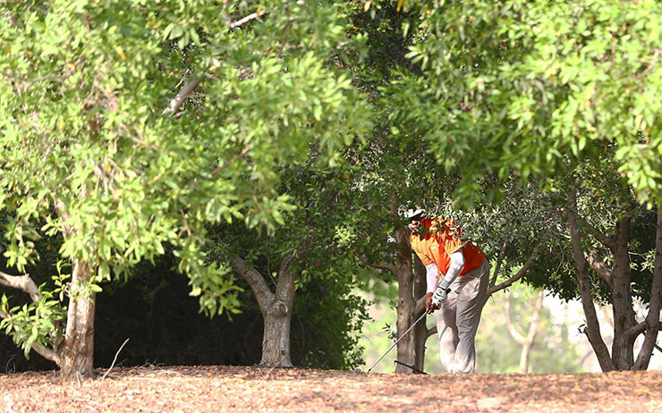 XCGC-Abu-Dhabi-Under-tree